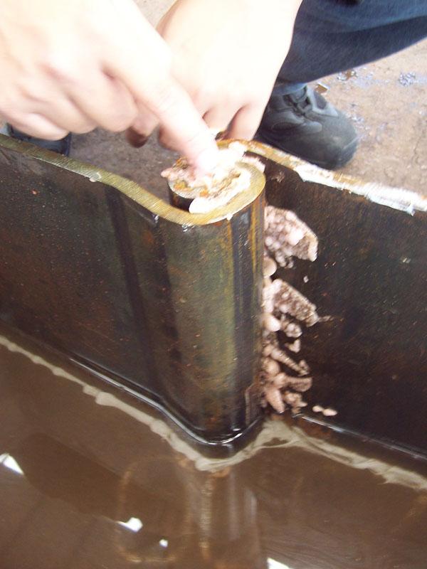 Waterdichte Sealants voor Grand Steel Pilings in het Nederlands